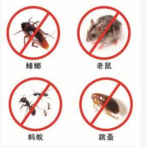 天津杀虫公司